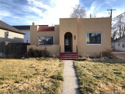 Pocatello Single Family Home For Sale: 437 E Halliday Street