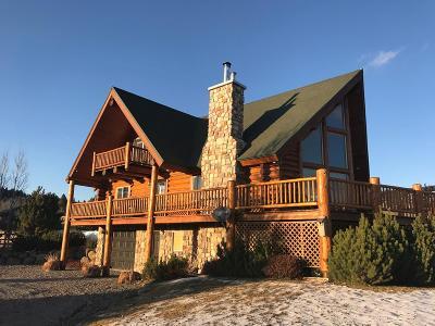Fremont County Single Family Home For Sale: 1668 Whisper Ridge Road