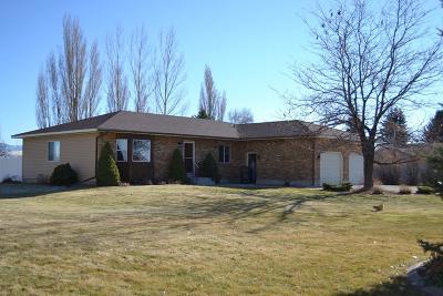 Shelley Single Family Home For Sale: 1445 N 1100 E