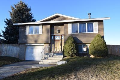 Shelley Single Family Home For Sale: 241 Meadowlark Drive
