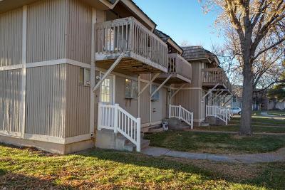Bonneville County Single Family Home For Sale: 1542 Falcon Drive