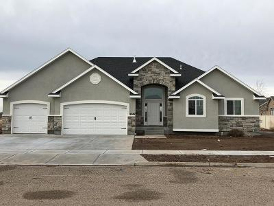 Idaho Falls Single Family Home For Sale: 4955 Pevero Drive
