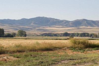 Idaho Falls Residential Lots & Land For Sale: 6919 S 25 E