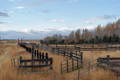Teton County Farm For Sale: 3498 W 4000 N