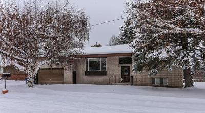 Fremont County Single Family Home For Sale: 325 N 7th E