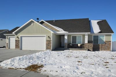 Idaho Falls Single Family Home For Sale: 3055 N Lucina Avenue