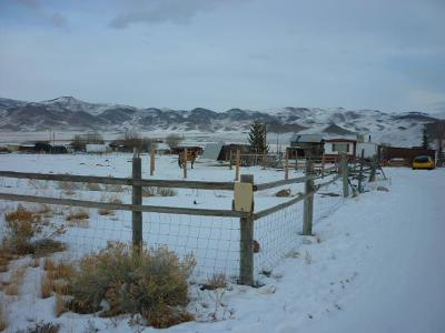 Custer County Single Family Home For Sale: 545 Skyline Drive