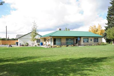 Blackfoot Single Family Home For Sale: 955 Airport Road