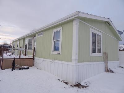 Pocatello Single Family Home For Sale: 3920 Nora #6