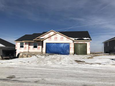 Pocatello Single Family Home For Sale: 832 Hallmark Drive