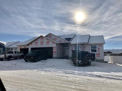 Pocatello Single Family Home For Sale: 849 Hallmark Drive