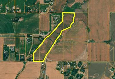 Idaho Falls Farm For Sale: Tbd E 49th S