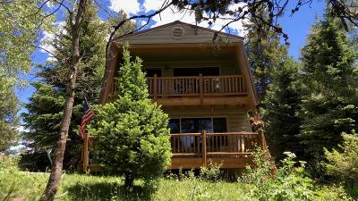 Fremont County Single Family Home For Sale: 4008 Squirrel