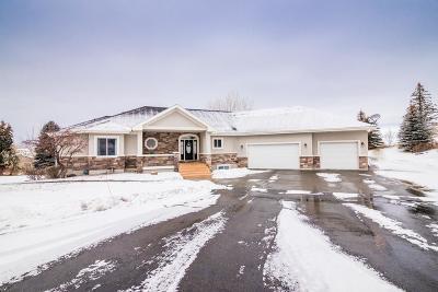 Idaho Falls Single Family Home For Sale: 5402 S Tappan Falls Drive