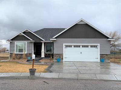 Idaho Falls Single Family Home For Sale: 3221 E Ringneck Drive