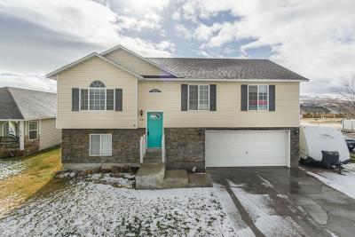 Chubbuck Single Family Home For Sale: 933 Margaret Street