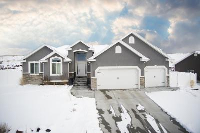 Pocatello Single Family Home For Sale: 1030 Dolostone