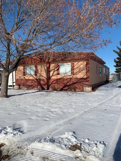 Idaho Falls Single Family Home For Sale: 2181 Bristlecone Lane