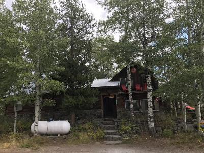 Island Park Single Family Home For Sale: 3779 Basalt Lane