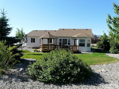 Custer County Single Family Home For Sale: 430 Leesburg Lane