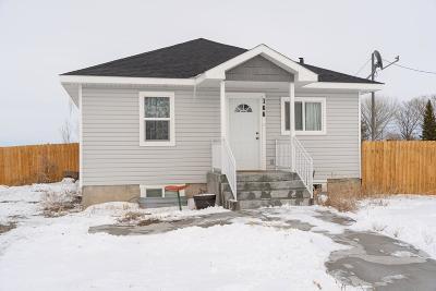 Blackfoot Single Family Home For Sale: 166 N Hwy 91