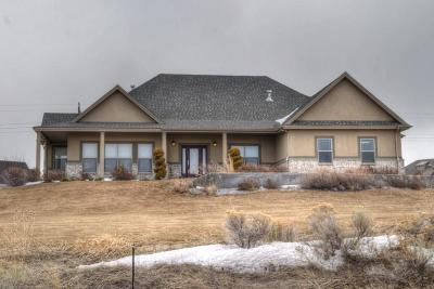 Idaho Falls Single Family Home For Sale: 8065 S Black Hawk Drive