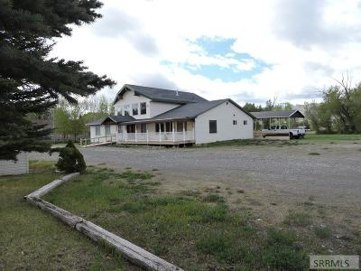Custer County Single Family Home For Sale: 4251 Hwy 93