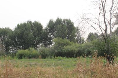 Rigby Residential Lots & Land For Sale: 475 N 3700 E