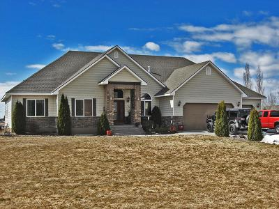 Rigby Single Family Home For Sale: 133 N 4100 E