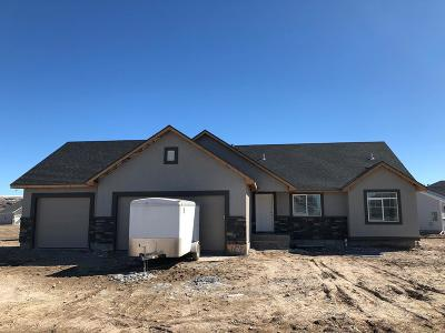 Bonneville County Single Family Home For Sale: 4727 S Thunder Drive
