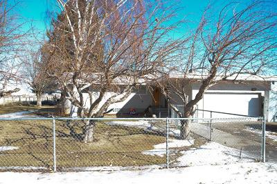Idaho Falls Single Family Home For Sale: 2930 Pioneer Road