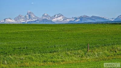 Fremont County Farm For Sale: 501 Acre 900 N