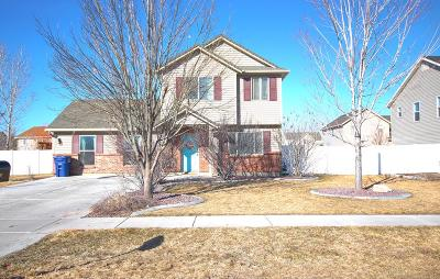 Idaho Falls Single Family Home For Sale: 1111 Drystone Drive