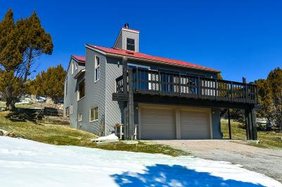 Bannock County Single Family Home For Sale: 1247 N Gale Mountain Road