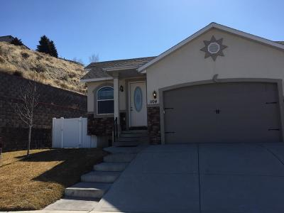 Bannock County Single Family Home For Sale: 1104 Wall Street