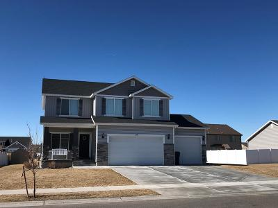 Idaho Falls Single Family Home For Sale: 2995 N Lucina Avenue