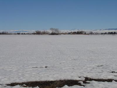 Fremont County Farm For Sale: 240 N 2300 E