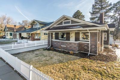 Pocatello Single Family Home For Sale: 1055 N Garfield