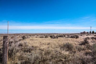 Idaho Falls Residential Lots & Land For Sale: 9800 W Arco Hwy
