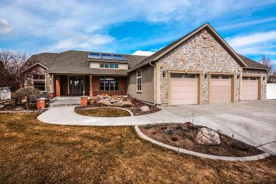 Idaho Falls Single Family Home For Sale: 226 Tollgate Place