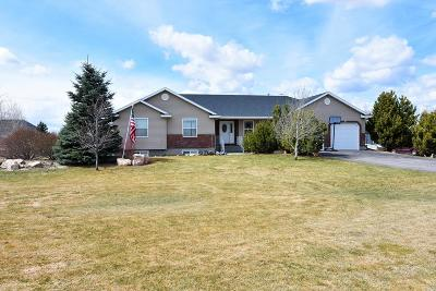 Rigby Single Family Home For Sale: 413 N 3846 E