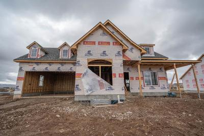 Idaho Falls Single Family Home For Sale: 4374 E Booner Street