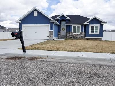 Idaho Falls Single Family Home For Sale: 3836 Golden Lane