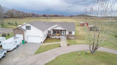 Rigby Single Family Home For Sale: 641 N 3900 E