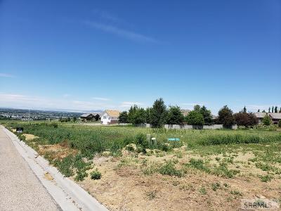 Rexburg Residential Lots & Land For Sale: L5 Blk 3 Fairview Avenue