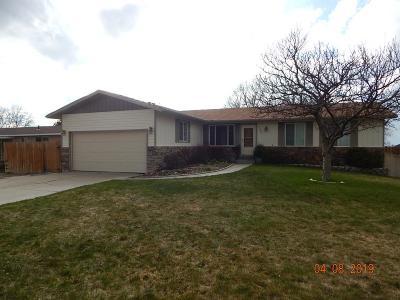 Pocatello Single Family Home For Sale: 2200 Ada Avenue