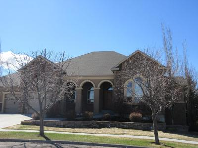 Rexburg Single Family Home For Sale: 368 Eagle Court