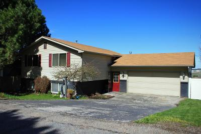 Pocatello Single Family Home For Sale: 2626 Castle Peak Way