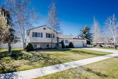 Idaho Falls Single Family Home For Sale: 4360 Cochise Drive