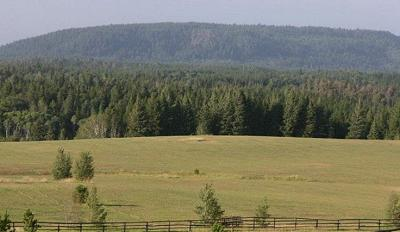 Fremont County Farm For Sale: 4423 Grey Owl Drive